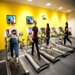 Commercial Gym Equipment Manufacturers in Ashurst 3